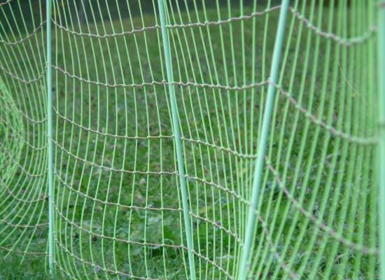 Cazis: Ablegen von Weidezäunen