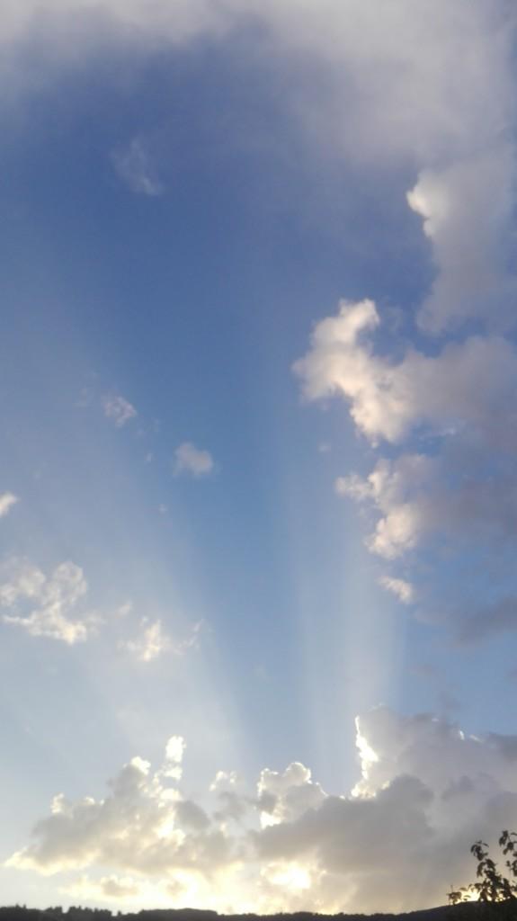 Das Foto entstand zwischen Summaprada (Cazis) und den Caznerwiesen) Thusis